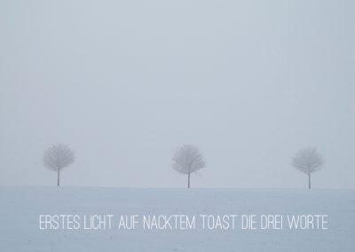 erstes Licht