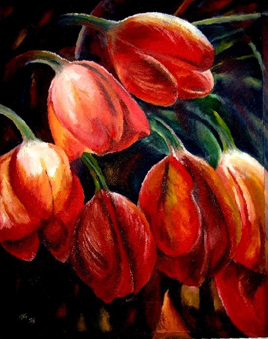 sieben Tulpen