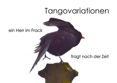 Tangovariationen