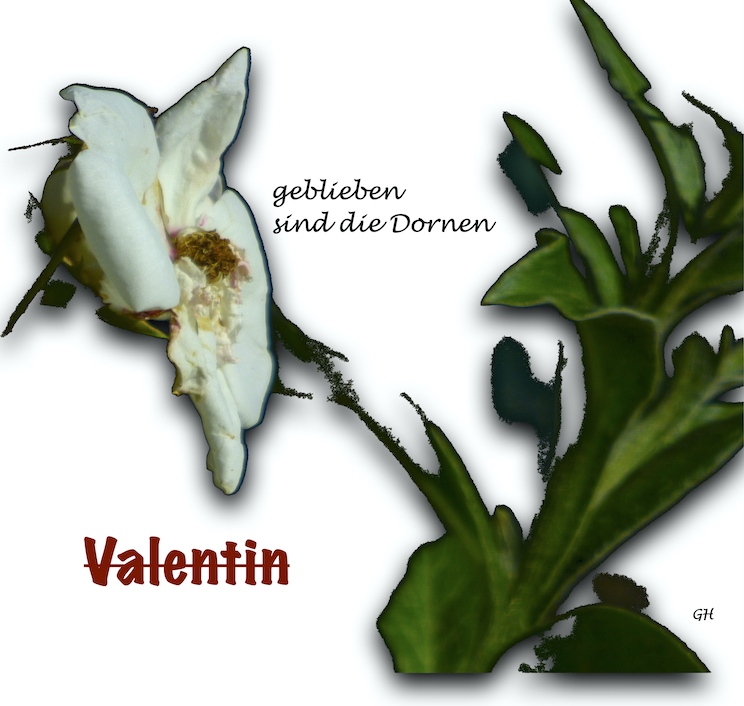 H Valentin
